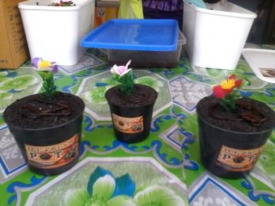 Ada Es Krim Pot Isi Cacing Lho di Lampung Fair