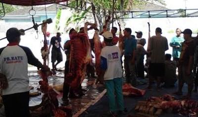 Sukses Bagikan 1.600 Paket Daging, Masjid Baiturrahman Kemiling Menginspirasi