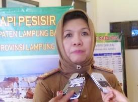 Pilkada Lamteng: Tim Gunadi-Imam Nilai Pembengkakan DPS Tak Wajar