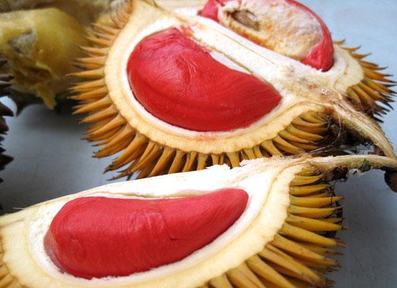 Durian Merah, Buah Unik Khas Kabupaten Banyuwangi