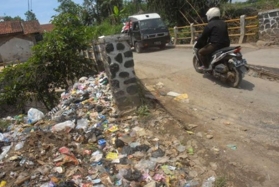Kemarau, Hasil Panen Singkong di Lampung Timur Terancam Turun