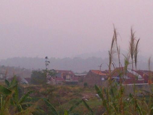 BMKG: Kabut Asap di Lampung Bukan Kiriman Daerah Lain