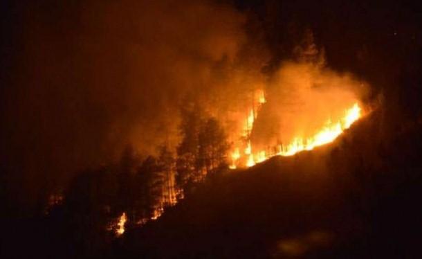 Kebakaran Gunung Lawu