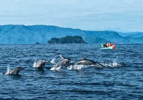 Teluk Kiluan menjadi satu dari tujuh kawasan wisata unggulan Provinsi Lampung (Ilustrasi). | satuarahtour.com