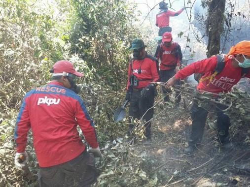 Sejumlah relawan PKPU sedang memadamkan api pada lahan yang terbakar. | PKPU