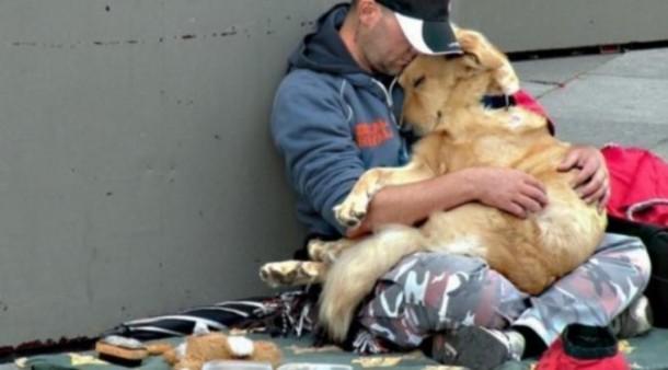 Ditemani Anjing saat Mengemis, Gelandangan Cerdik Ini Raup Rp2,7 Juta per Jam