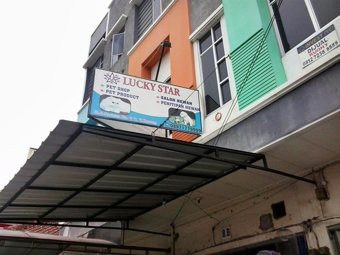 Pet Shop Lucky Star Bandar Lampung Sediakan Berbagai Kebutuhan Hewan Peliharaan