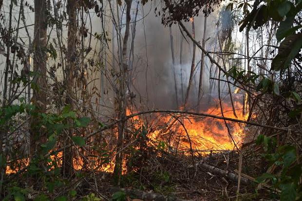 Breaking News: Arus Pendek Diduga Menjadi Penyebab Kebakaran di Palapa Kelurahan Gunung Terang