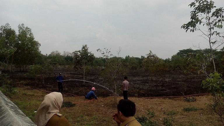Area lahan kampus IAIN terbakar, Rabu 3/11/2015. | Kaslan/Jejamo.com