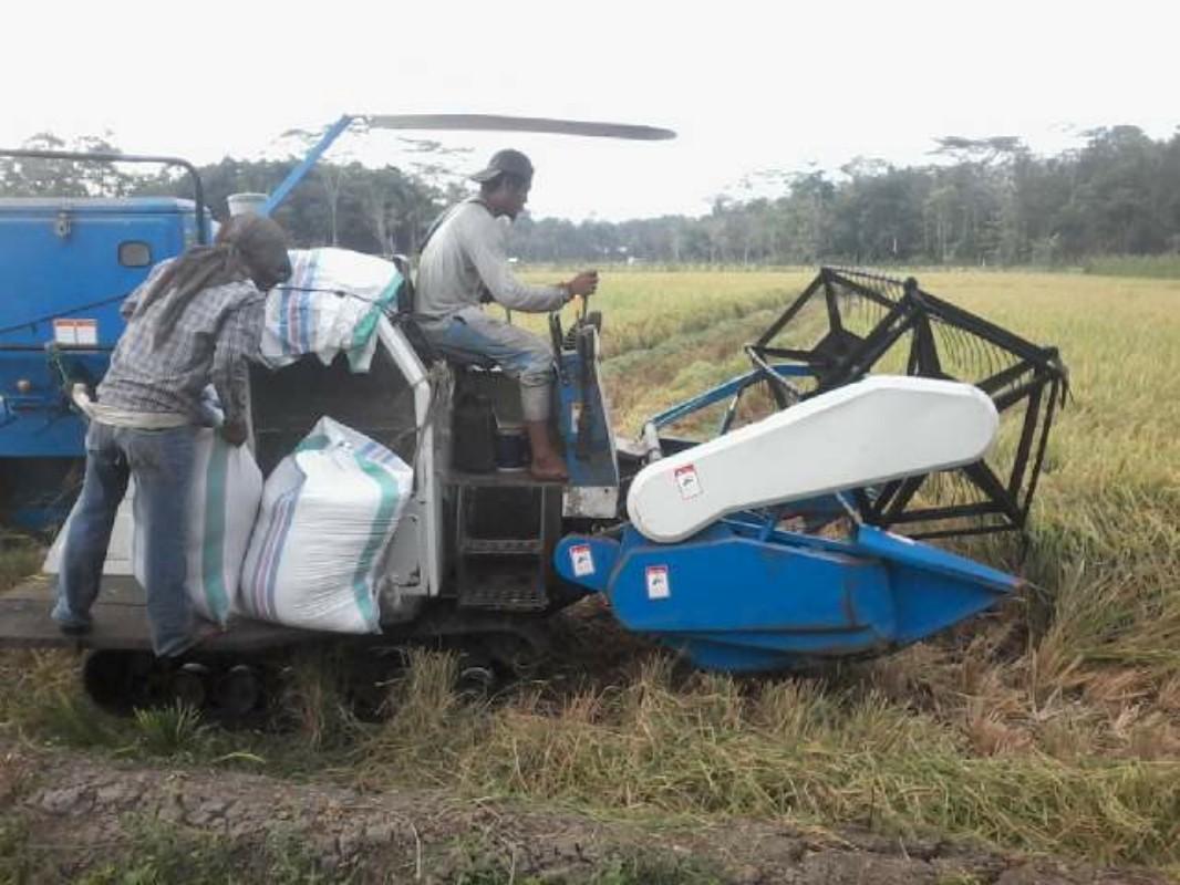 Mesin panen bantuan dari Pemda Lampung Timur ini membantu petani setempat dalam memanen padi