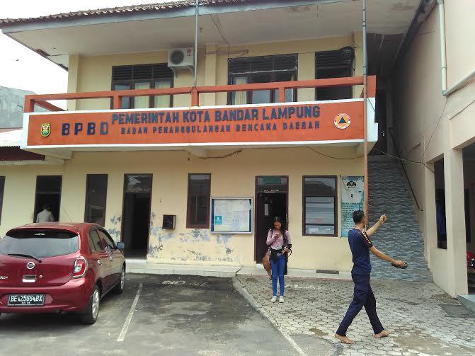 BPBD Bandar Lampung: Waspada Pohon Tumbang