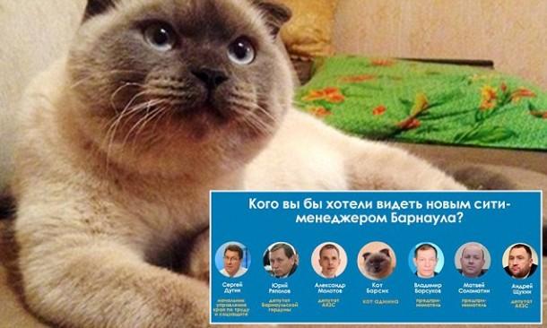 Kucing Ini Menang Pemilihan Wali Kota di Rusia