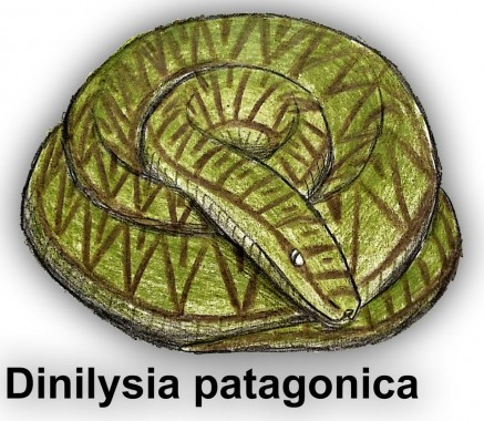 Dinilysia Patagonica