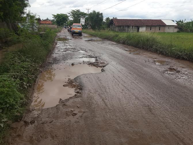 Lubang menyerupai kubangan kerbau di Jalan Provinsi yang menghubungkan Pringsewu-Pardasuka | Kholik/jejamo.com