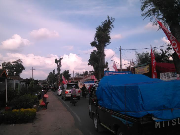 Jalan Raya Pekalongan Lampung Timur-Metro Padat