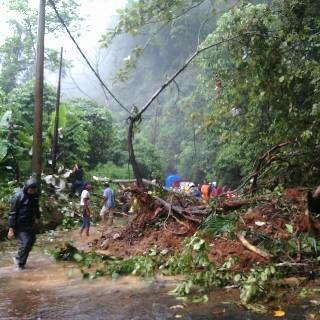 Breaking News: Longsor di Lampung Barat, Jalan Liwa-Krui Putus