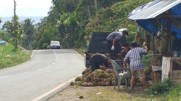 Salah satu penjual durian di Tanggamus | ist
