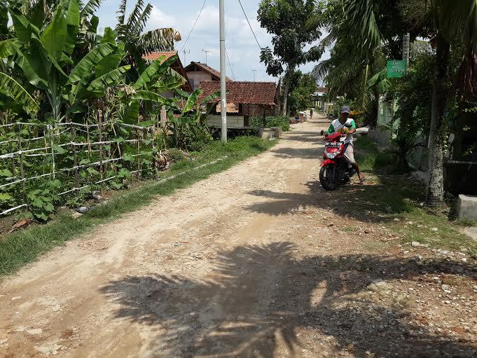 Puluhan tahun tak mendapatkan sentuhan pembangunan jalan, warga Jalan Basid Pringsewu berharap perhatian pemerintah untuk membangun tersebut. | Nur Kholik/Jejamo.com