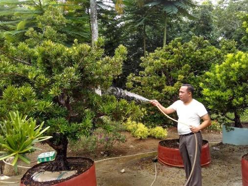 Beberapa Kecamatan di Lampung Tengah Rawan Demam Berdarah