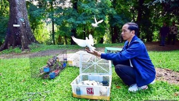 Presiden Jokowi Lepas Ratusan Burung di Kebun Raya Bogor