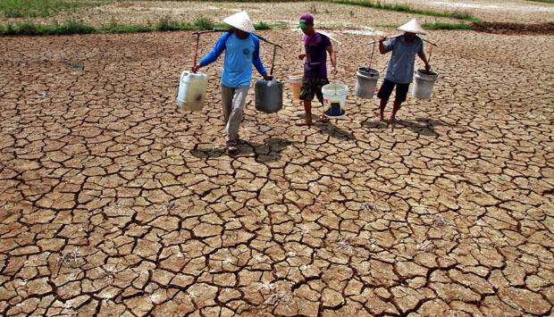 Dusun RK Cugriwe Poncowati Lampung Tengah Masih Kekeringan