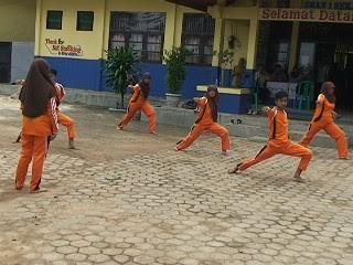 Program Pompanisasi Kabupaten Mesuji Diresmikan