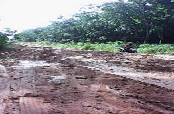 Pembangunan jalan dua jalur di Kabupaten Mesuji. | Defri/Jejamo.com