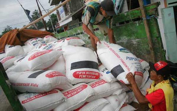 Kuota Pupuk Subsidi Lampung Tengah Paling Tinggi