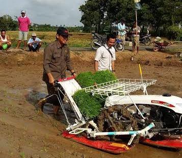 Kepala Dinas Pertanian, Perikanan dan Kehutanan Kota Metro Yeri Ehwan saat mencoba transplanter (alat tanam) pada hamparan lahan persawahan di Kelurahan Mulyosari, Metro Barat. | Tyas Pambudi/Jejamo.com