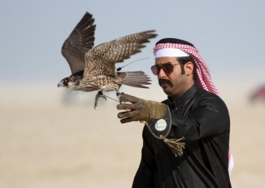 Qatar International Falcons and Hunting Festival, Olah Raga Para Raja