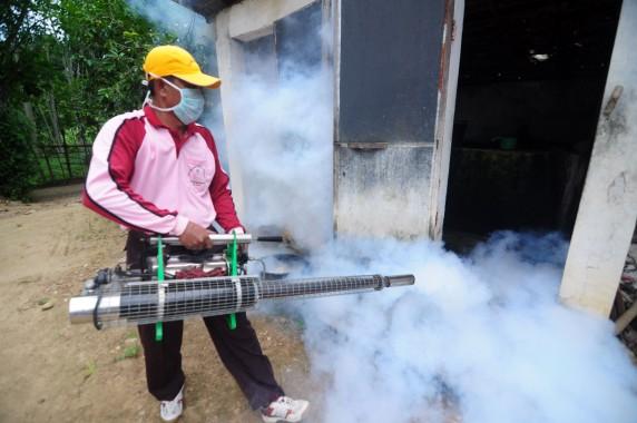 Fogging Ternyata Tak Efektif Basmi Nyamuk Aedes Aegypti