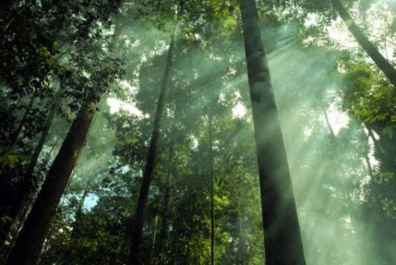 Trailer Selesai, Film Ghandaru Siap Tayang di Twenty One