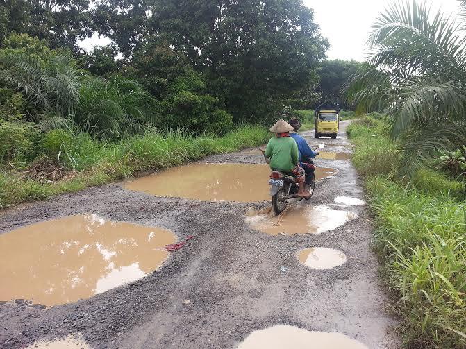 Jalan milik Pemerintah Provinsi Lampung di Kecamatan Sekampung Udik, Kabupaten Lampung Timur, rusak parah dan menyerupai kolam ikan | Parman/jejamo.com