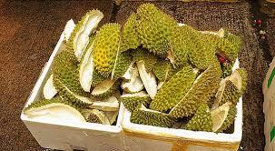 Kulit durian | ist