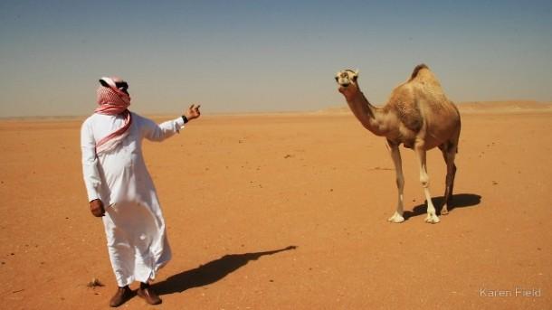 Padang Pasir Arab Saudi