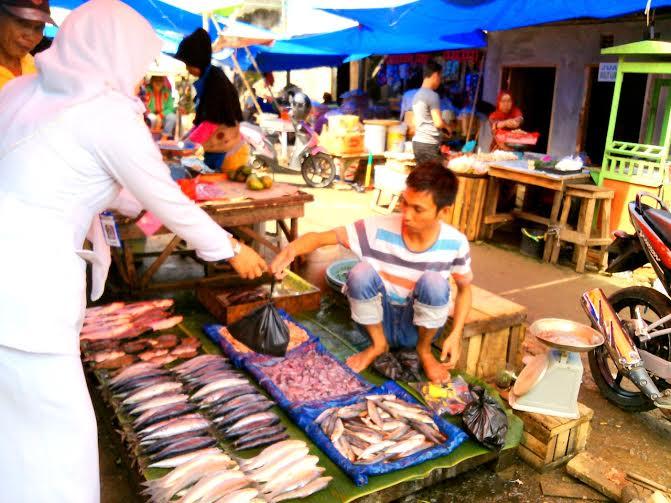 Ikan Gabus Langka di Kotabumi, Pedagang Mengeluh