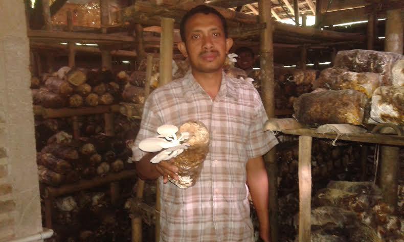 Wagiman, pembudidaya jamur tiram di Pekon Argopeni Tanggamus. | Adrian Arlambang/Jejamo.com