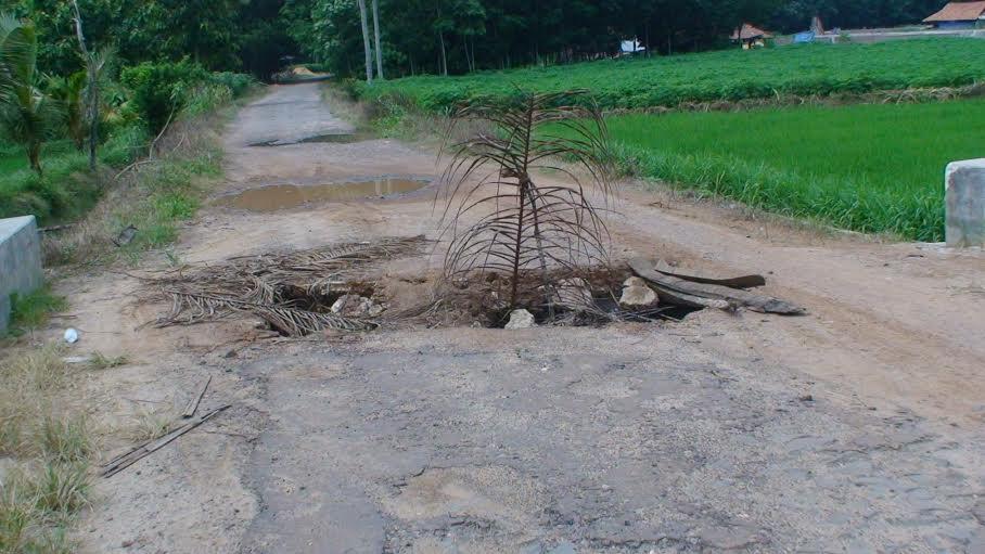 Jembatan penghubung Dusun 3 Desa Mekarsari dengan Desa Hargo Mulyo Kecamatan Sekampung Kabupaten Lampung Timur rusak parah. | Parman/Jejamo.com