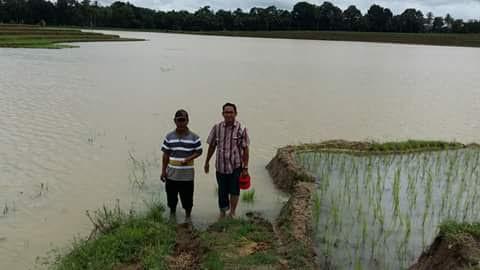 Kepala Dinas Pertanian, Perikanan dan Kehutanan Kota Metro Yerri Ehwan dan petani pemilik lahan sawah yang terendam air luapan sungai. | Tyas Pambudi/Jejamo.com