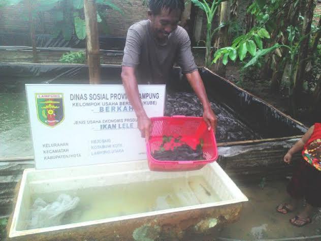 Berdayakan Warga, Kelurahan Rejosari Lampung Utara Terus Membangun