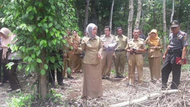 Zulkifli Hasan: SMA Kebangsaan Bantu Tingkatkan Mutu Pendidikan di Lampung