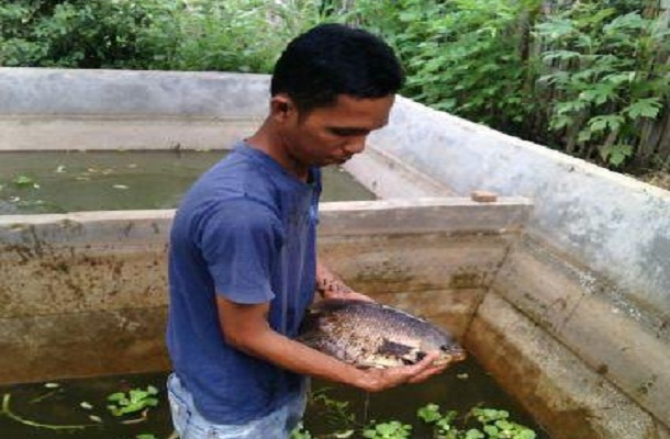 Monteski Oktosir, warga Jalan St Selibar Jagat, Nomor 65, Kotabumi Ilir, memberanikan diri untuk memulai wirausaha pemijahan ikan | Prika/jejamo.com