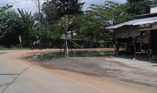Warga Bandarjaya Timur Lamteng menanam pohon pisang di jalan sebagai bentuk protes pada pemerintah terkait kerusakan jalan. | Adrian/Jejamo.com