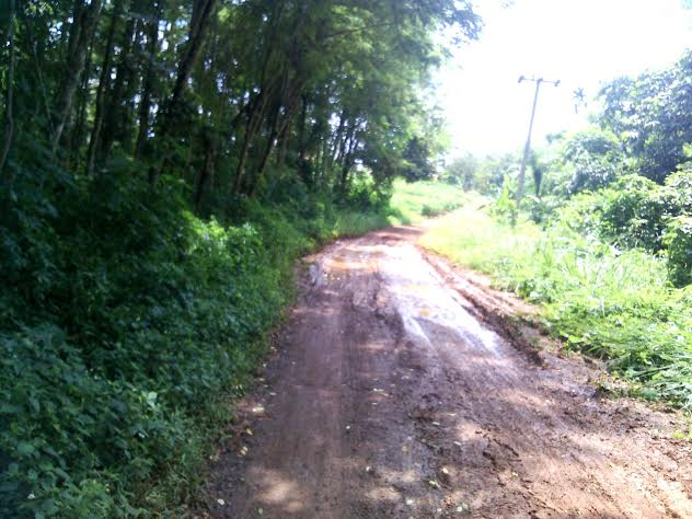 Jalan Gunung Betuah Lampura Rusak, Warga Harapkan Perhatian Pemerintah