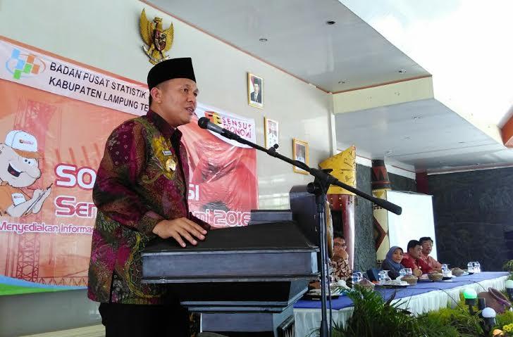 Cegah Abrasi, 10 Desa di Pesisir Pantai Lampung Timur Ditanami Mangrove
