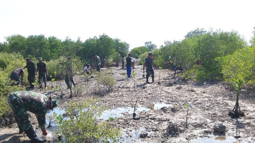 Penanaman pohon mangrove di kecamatan Pasir Sakti, Lampung Timur, Kamis 31/03/2016. | Parman/Jejamo.com