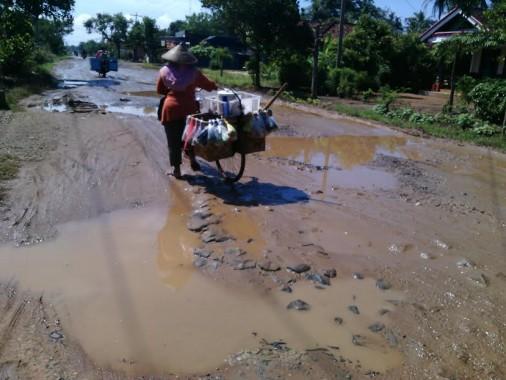 Jalan Desa Tamanbogo Lampung Timur Rusak, Penjual Sayur Sulit Lewat