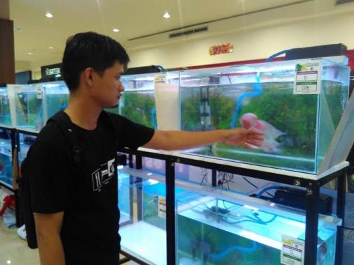 Kontes Louhan di Bandar Lampung Diminati Warga