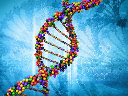 Peneliti Berhasil Temukan Gen Kebahagian