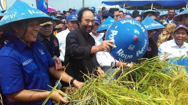 Mustafa Resmi Ketua DPW NasDem Lampung